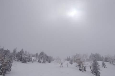 【滑走レポ 2013.3.26】2012/13シーズンのラストパウダーを狙って!@かぐら_e0037849_22542033.jpg