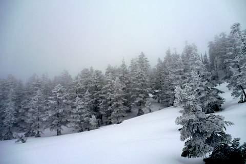 【滑走レポ 2013.3.26】2012/13シーズンのラストパウダーを狙って!@かぐら_e0037849_2254422.jpg