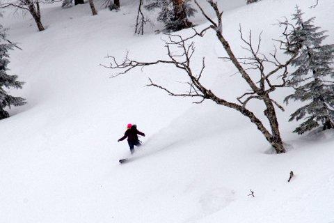 【滑走レポ 2013.3.26】2012/13シーズンのラストパウダーを狙って!@かぐら_e0037849_22545990.jpg