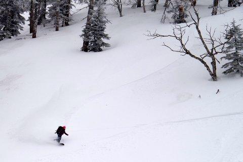 【滑走レポ 2013.3.26】2012/13シーズンのラストパウダーを狙って!@かぐら_e0037849_22551131.jpg