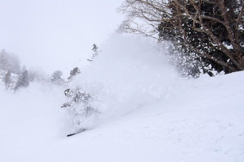 【滑走レポ 2013.3.26】2012/13シーズンのラストパウダーを狙って!@かぐら_e0037849_22554180.jpg
