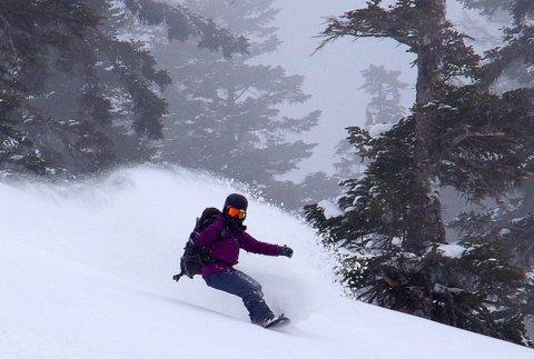 【滑走レポ 2013.3.26】2012/13シーズンのラストパウダーを狙って!@かぐら_e0037849_22584976.jpg