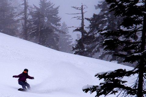 【滑走レポ 2013.3.26】2012/13シーズンのラストパウダーを狙って!@かぐら_e0037849_22592376.jpg