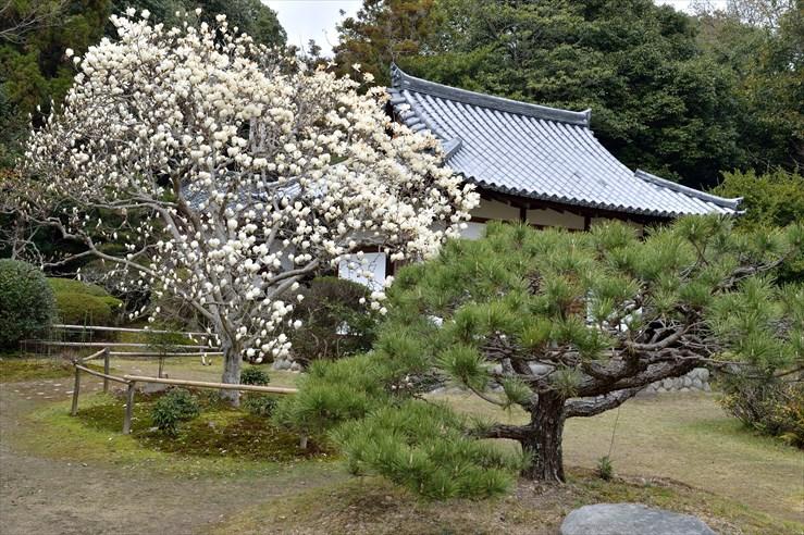 奈良旅行 その2 秋篠寺_e0170058_1653350.jpg