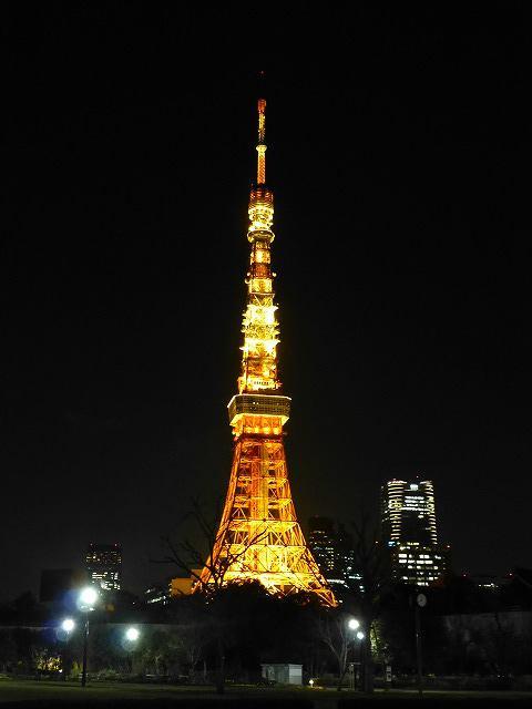 東京タワーと桜♪_c0100865_12588.jpg