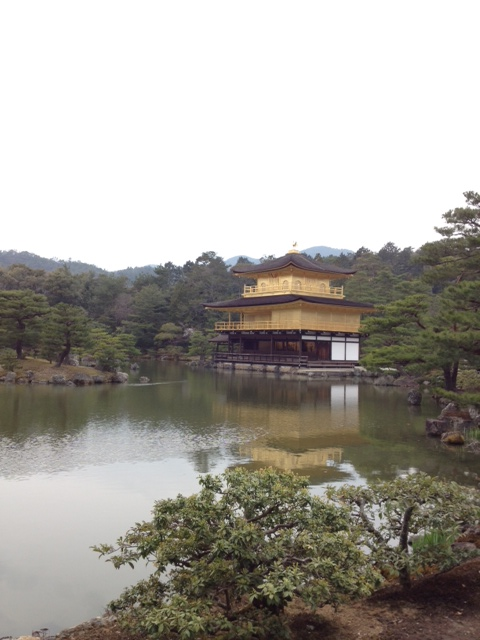 3月29日 京の桜_a0023466_23185270.jpg