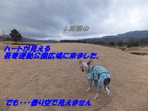 f0179203_15275328.jpg