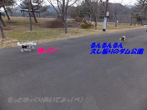 f0179203_2192962.jpg