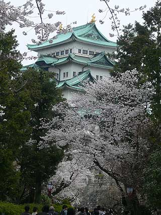 桜舞う、お城ツアーに参加しました_d0020309_16344295.jpg