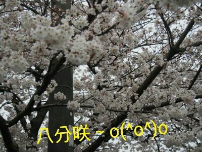f0239713_21284640.jpg