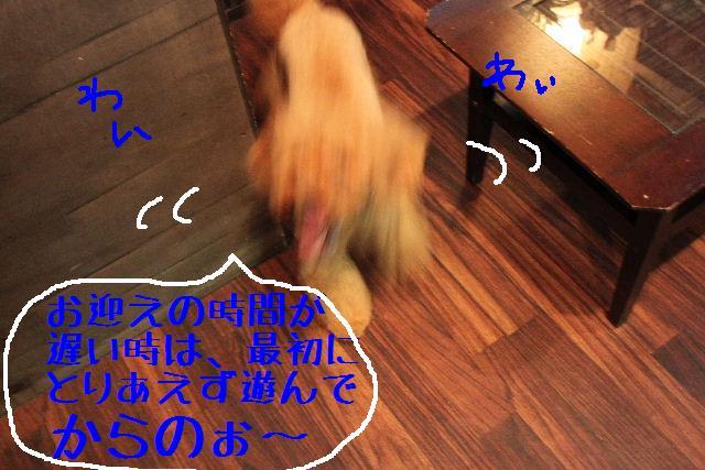 b0130018_10192993.jpg