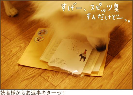d0212419_20174757.jpg