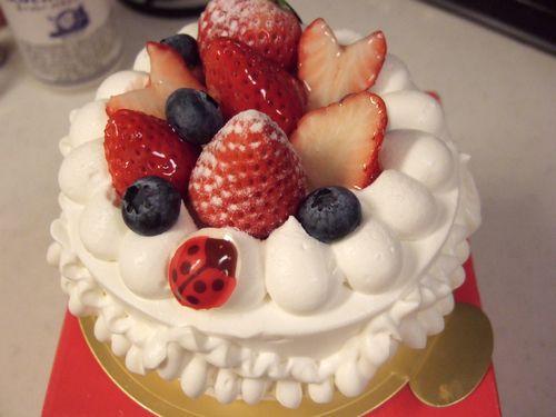 デコレーションケーキなど_e0160246_91544.jpg