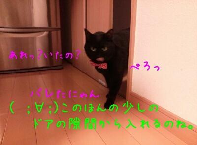 d0170555_21413858.jpg