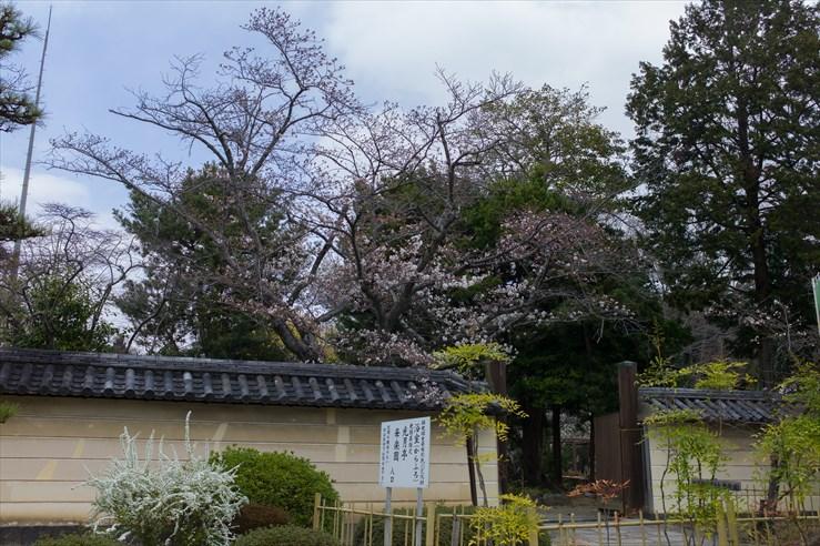 奈良旅行 その3 法華寺_e0170058_193286.jpg