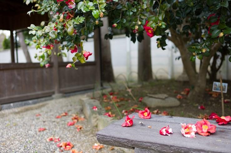 奈良旅行 その3 法華寺_e0170058_1934146.jpg