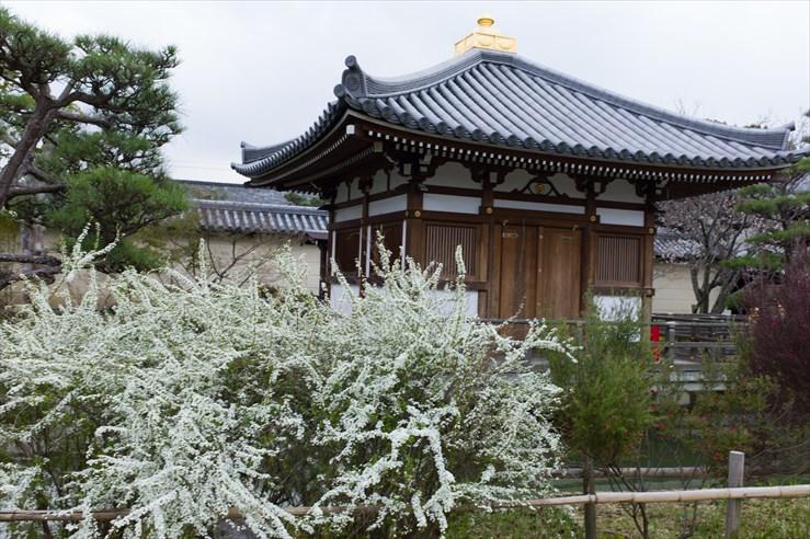奈良旅行 その3 法華寺_e0170058_1944093.jpg