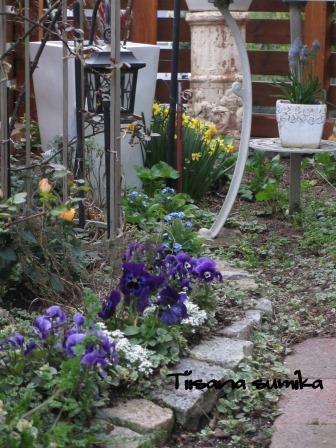 玄関前のお花たちに迎えられ和んでいます♪_a0243064_056521.jpg