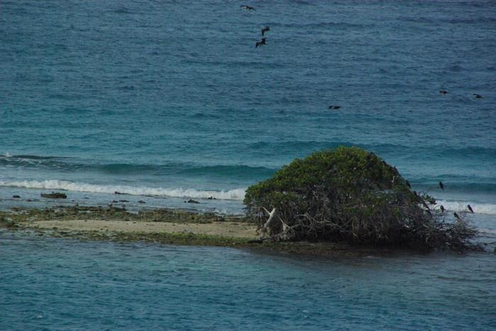 オランダ領アンティール諸島アルーバ-1 Antilles Aruba-1_e0140365_23523653.jpg