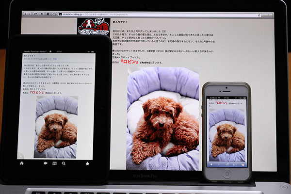 Kindle Paperwhite と Kindle Fire HD と_f0021369_23102671.jpg