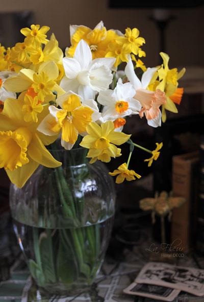お庭のスイセン_f0127281_19253592.jpg