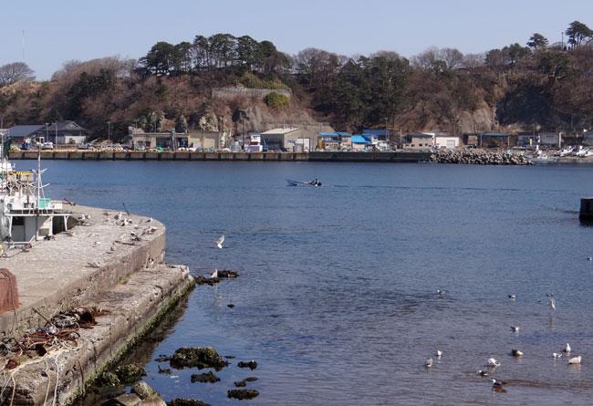 春風に誘われて西海岸ドライブ2013_a0136293_17365375.jpg