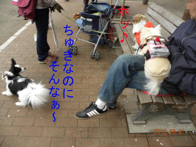 b0203018_1641763.jpg