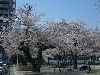 山王公園_e0149436_22132777.jpg