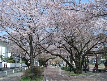 山王公園_e0149436_22134542.jpg