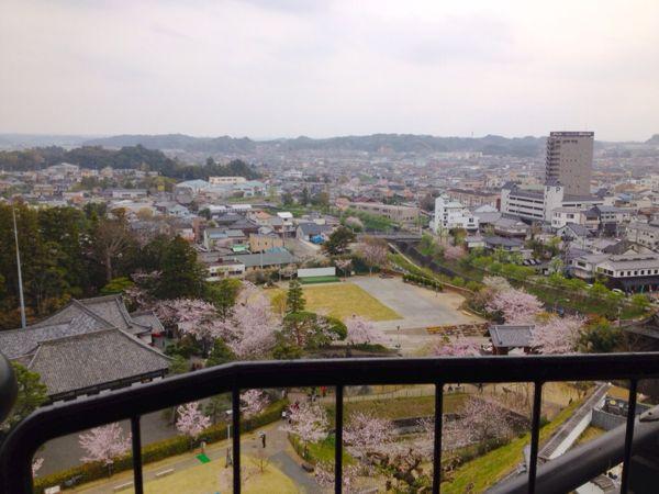 掛川城・浜松城・岡崎城_e0292546_23174822.jpg