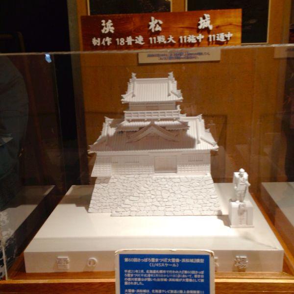掛川城・浜松城・岡崎城_e0292546_23175560.jpg