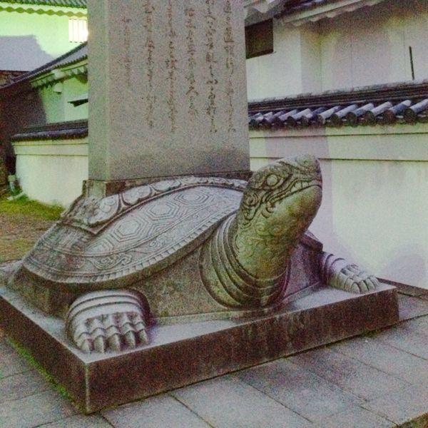 掛川城・浜松城・岡崎城_e0292546_2318829.jpg