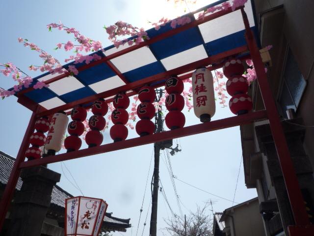 北野をどり・ハンバーグランチ・桜の歌舞練場へ。_f0181251_15442342.jpg