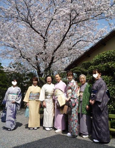 北野をどり・ハンバーグランチ・桜の歌舞練場へ。_f0181251_15491889.jpg