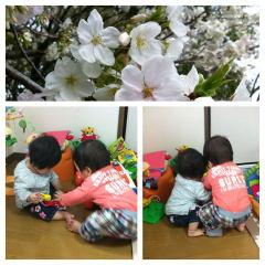 春ですね♪_c0160161_1471615.jpg