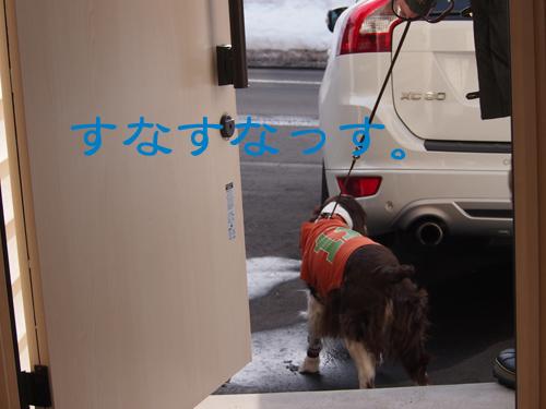 b0204977_2013352.jpg