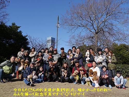 毎日の散歩は、お友達ワンちゃんたちと_b0175688_22391636.jpg