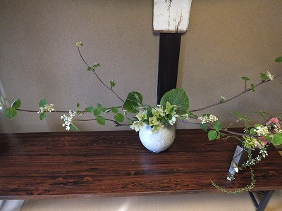 4月「春の日展」 Green thumb入荷です_e0187897_15211071.jpg