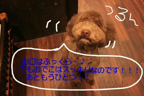 b0130018_22472723.jpg
