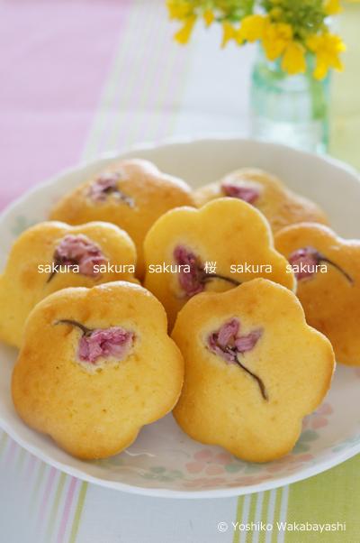 桜のカップケーキ_d0107929_17201873.jpg