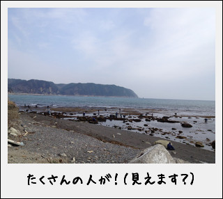 c0259934_15574376.jpg