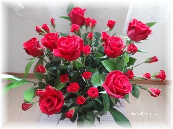 thanks お花_d0165645_124167.jpg