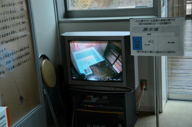b0277849_1745953.jpg