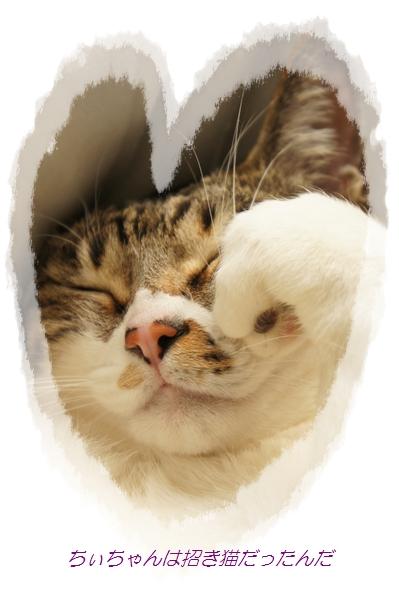 招き猫❤_e0236480_21415315.jpg