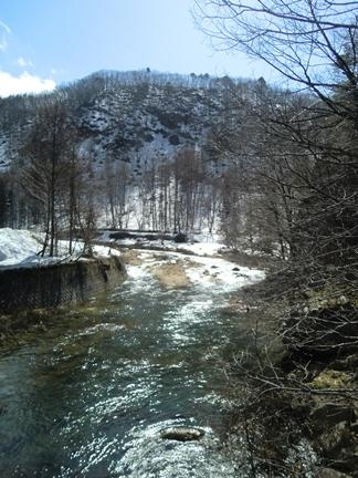 うれしい春の風景_f0227395_155261.jpg
