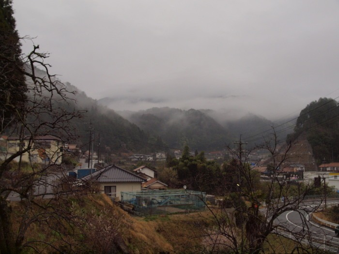 山に霧_c0116915_22463210.jpg