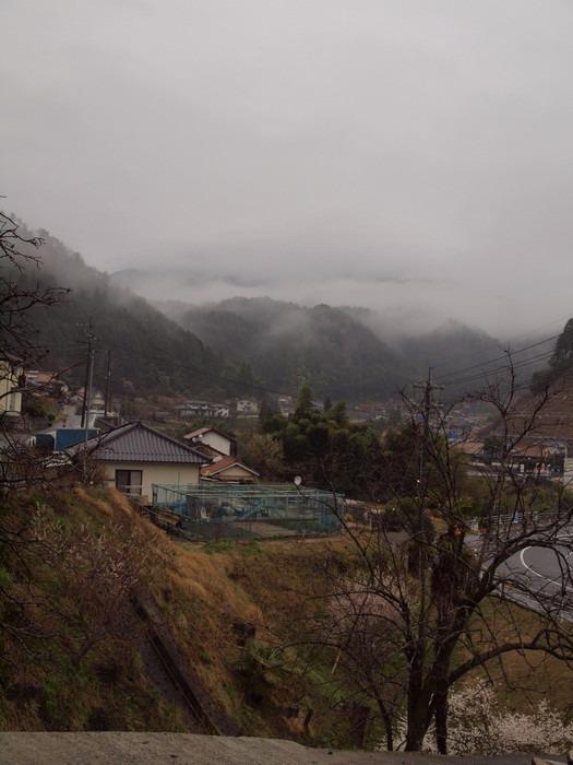 山に霧_c0116915_2247593.jpg