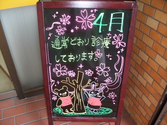 春ですね^^_a0112220_16281117.jpg