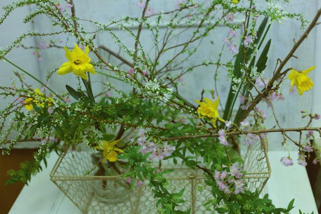 一会定期スクール3月 春の花木のブーケ1 コンパクトなブーケ編_a0042928_184212100.jpg