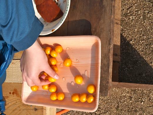 「福島の子どもたち香川へおいでプロジェクト」春企画 3月30日レポ #save_children_b0242956_6202364.jpg